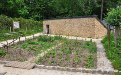 Aménagement de jardins pédagogiques – Raizeux 78